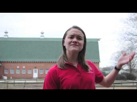 North Carolina State University veterinary students discuss their need for Easi-Scan