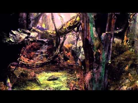Хоббит: нежданное путешествия. Видеоблог #4 Питера Джексона.(озвучка Русская )