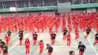 Dance of the Steel Bars Gentleman   full version)