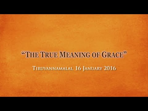The True Meaning of Grace - Satsang with Swami Atmananda Udasin