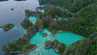Experience the Ultimate Safe and Fun Diving in Indonesia's Underwater Paradise