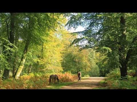 Ernest Chausson - Poème, op. 25