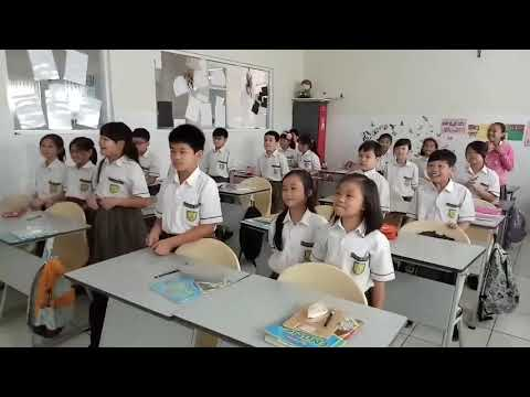 Baby shark dance in class