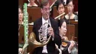 Richard Strauss: Horn Concerto No.1 in Eb major, Op.11, I