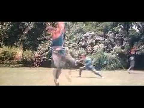 shaolin temple 1982 full movie online