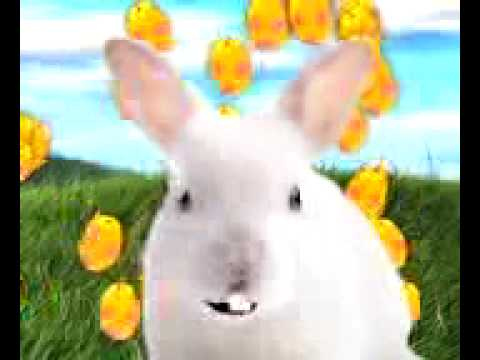The Easter Hunny Bunny Song