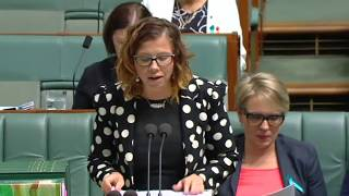 Parliament - 6 February 2018 - Birmingham playing politics with preschool