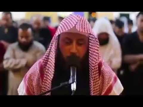 al-Qari al-Syaikh Hamzah al-Far [Surah al-Furqan 61-77]