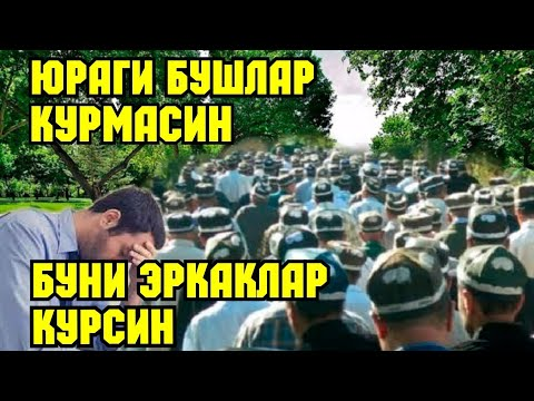 ЮРАГИ БУШЛАР КУРМАСИН ФАКАТ ЭРКАКЛАР КУРСИН