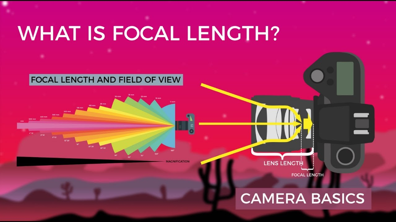 A Beginner's Guide to What the Focal Length of a Lens Really