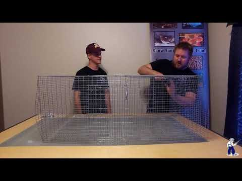 How To Build A Hostile Hare Rabbit Cage
