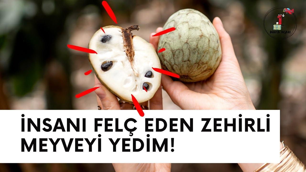 ÇEKİRDEĞİ FELÇ EDEN MEYVEYİ YEDİM! (Dünyanın en tatlı ve zehirli meyvesi Cherimoya)