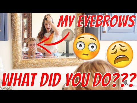 MY FRIEND DYED MY EYEBROWS | THE LEROYS