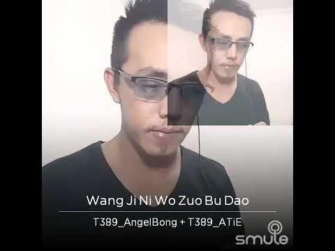 Wang Ji Ni Wo Zuo Bu Dao