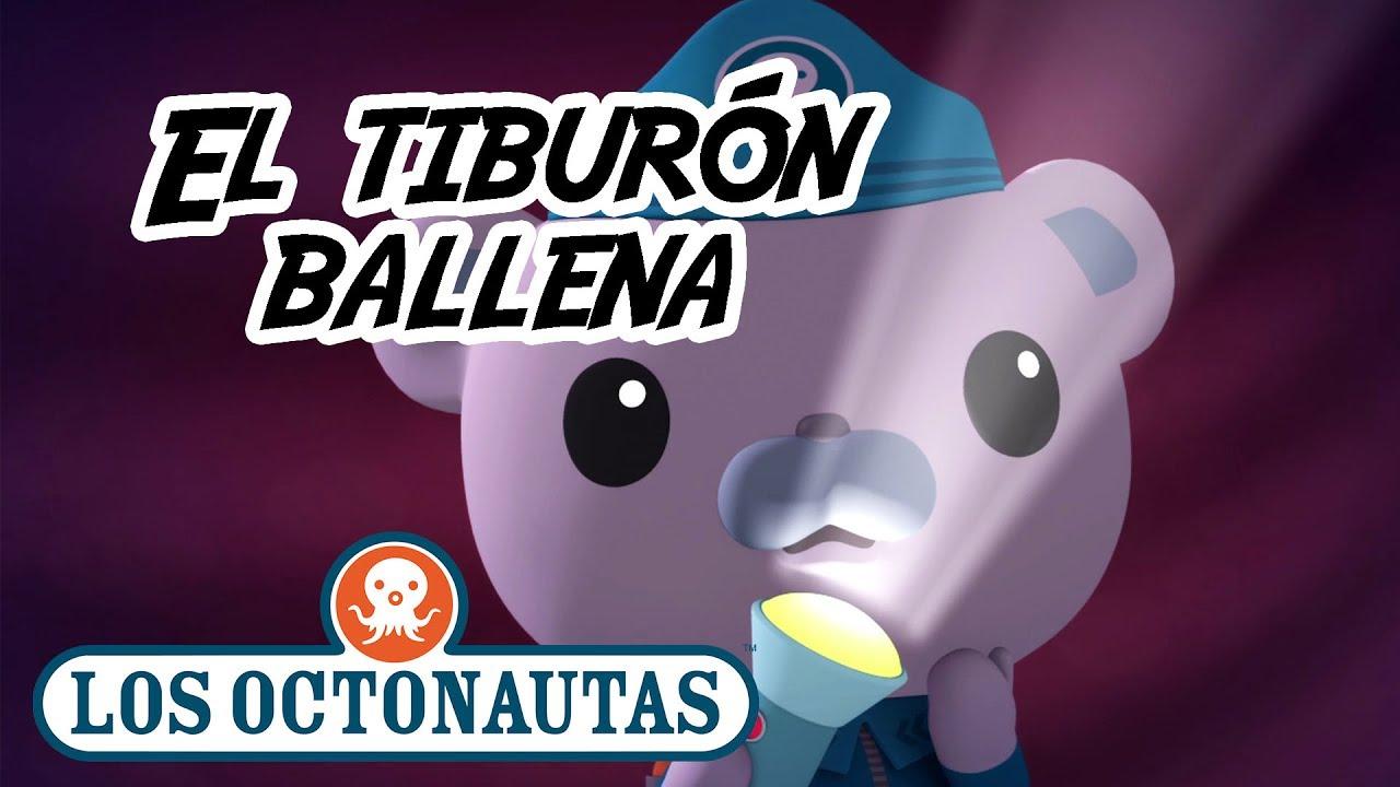 Los Octonautas Oficial en Español - El tiburón ballena | Episodio 10