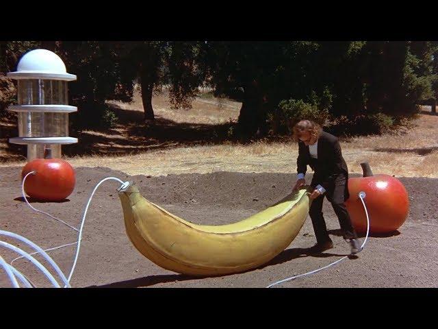 小伙一觉醒来竟是200年后,世界已经大变样,水果比人类都大