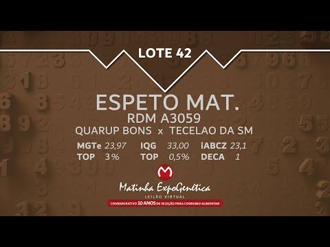LOTE 42 MATINHA EXPOGENÉTICA 2021