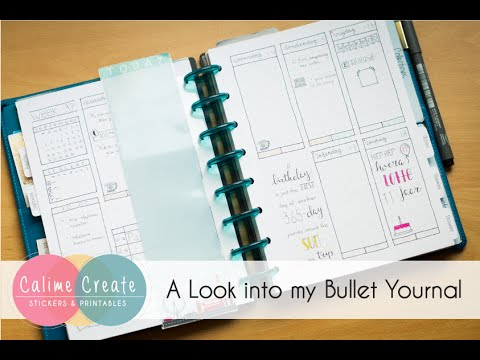 a look into my discbound bullet journal youtube. Black Bedroom Furniture Sets. Home Design Ideas