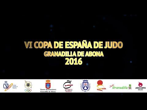 VI Copa de España de Judo Granadilla