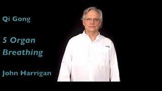"Qi Gong - ""Five Organ Breathing"" - Gain Inner Strength, Balance, Calm"