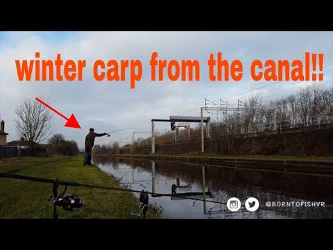 Canal Secrets Part 4 - Beautiful Winter Carp (2017)  English (West Midlands)