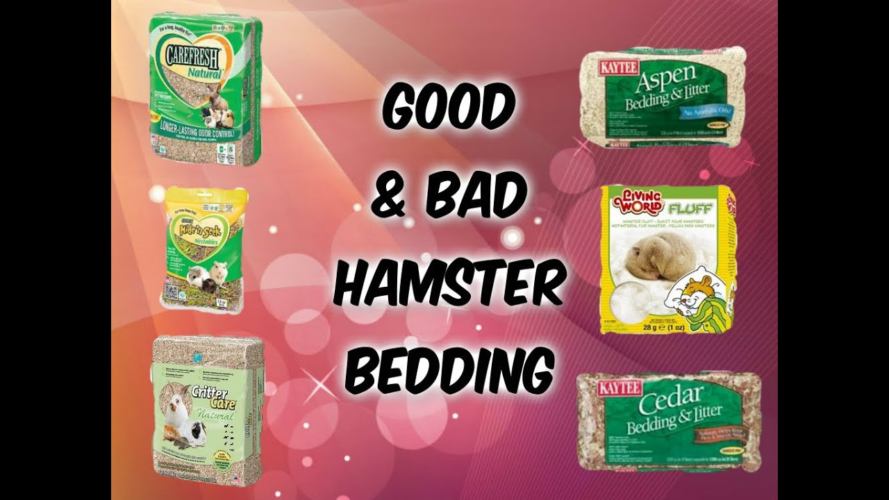 to bed bedding version own steps your make with step how pictures hamster