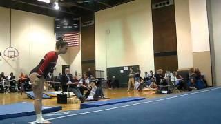 Niles West gymnasts at New Trier Regional
