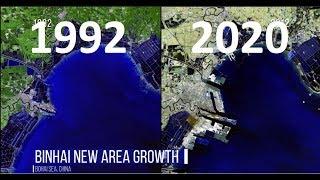 maps that make me plant trees