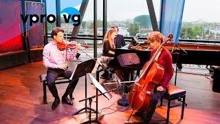 Delta Piano Trio - Beethoven/ from: Piano Trio Nr.2 in Es (Live @Bimhuis Amsterdam