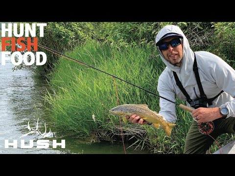 BIG BROWN TROUT ON THE SOUTH FORK