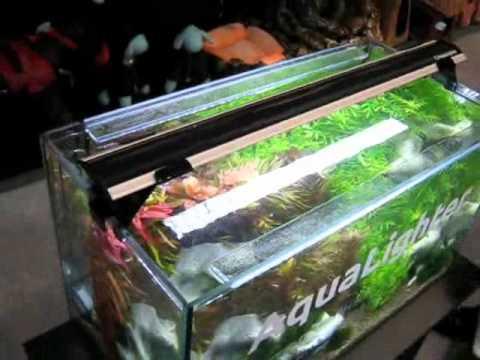 Светильник led для аквариума своими руками