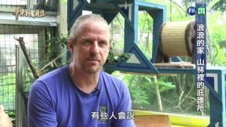 0602華視新聞雜誌-浪浪的家 山林裡的庇護所