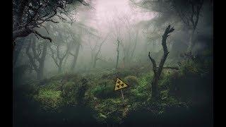 S.T.A.L.K.E.R. - Call of Chernobyl [stason174] - Тайна Зоны, часть 17