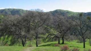 Sunol Ohlone Wilderness or Little Yosemite in Early Spring 2009 - Set to Music of JS Bach