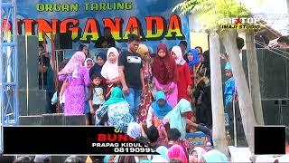 Tengdung Penganten Baru - Mimi Bawon - Bunga Nada Live Prapag Kidul