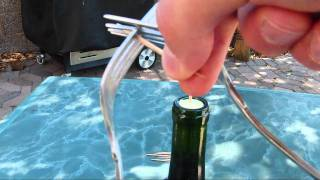 Impossible Toothpick and Fork Wine Bottle Trick