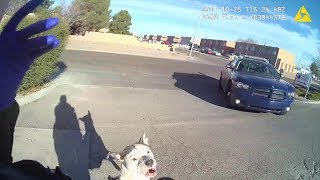 Las Cruces Police Officer Shoots Pit Bull Attacking Her