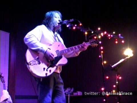 ANIMAL GRACE's Tony Powell - Solo & Acoustic (a)
