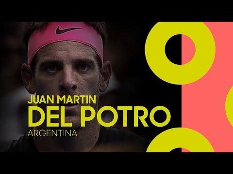 Juan Martín del Potro player profile