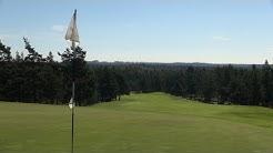 Golfarin kenttätestissä Sarfvik, New Course