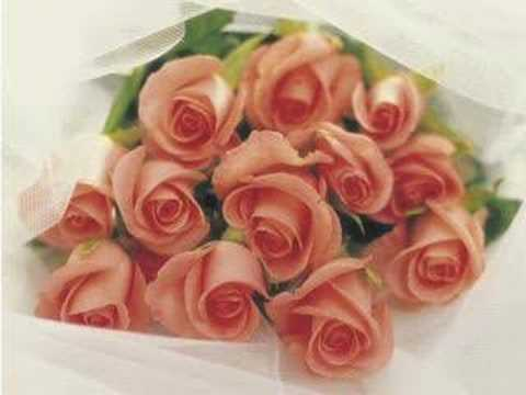 999 Roses )chinese)