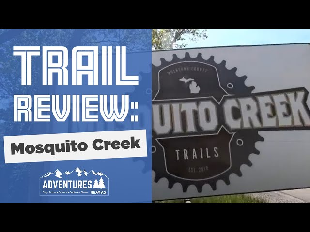 Mosquito Creek Trail Review