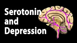 Serotonin and Treatments for Depression, Animation.