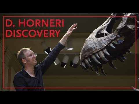 Dr. Thomas Carr Introduces the Daspletosaurus Horneri