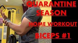 Quarantine season home workout Biceps #1