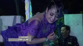 Download lagu TARI ULAR NEW BLORONG REOG PUTRO BUDOYO LIVE IN BENGKELO LOR PIM BUNG AJIS DINTAKTONG