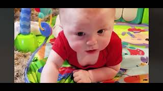 Funny and Cute baby videos   Funny Babies   Funny Baby Videos   Baby Fails   Chubby Babies