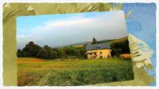 Hektarowa działka w Hoczwi z dojazdem i dostępem do mediów