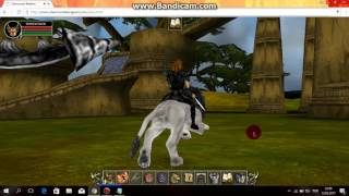 SHERWOOD DUNGEON PET HİLESİ