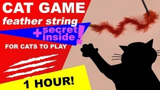 Cat Game Online: 1 Hour